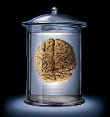 Brain in a jar.jpg