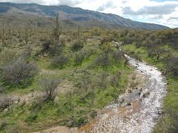 Streams in the desert 4.jpg
