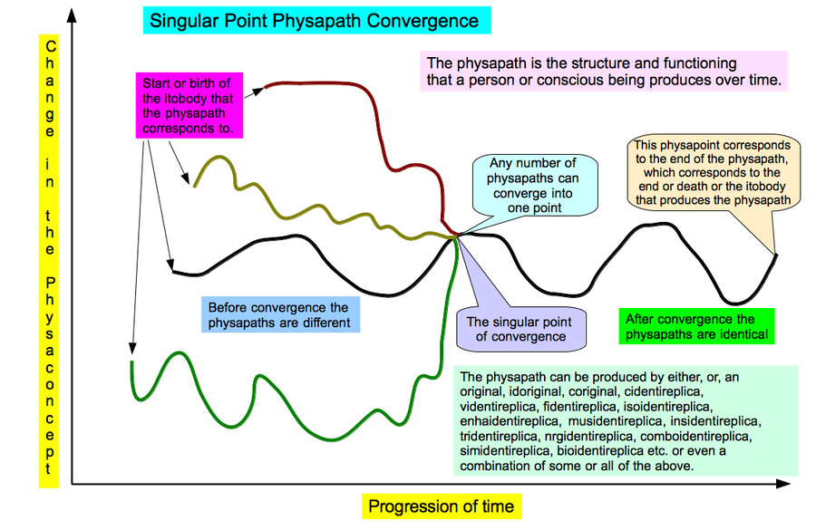 Singular Point Physapath Convergence .png